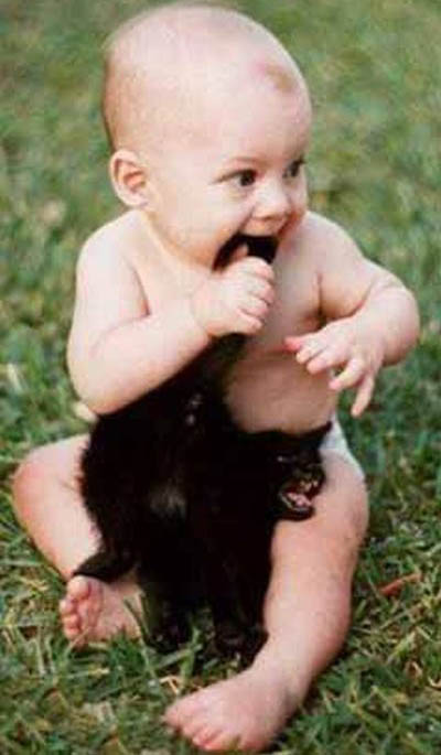 fotos-bebes-humor-17