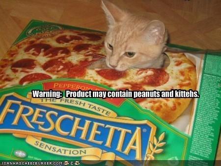 gatos locos pizzas3