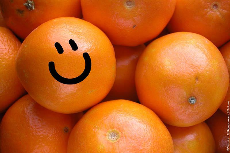 naranjas propiedades beneficios oranges