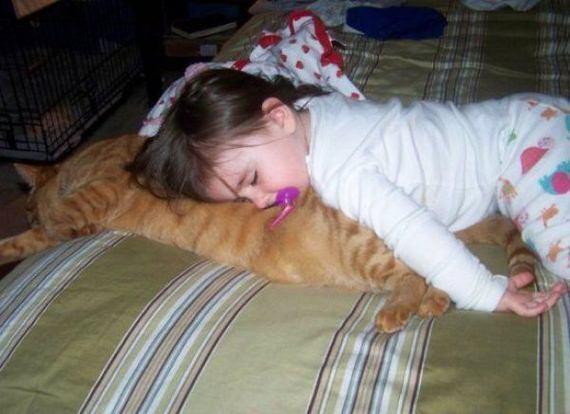 fotos-bebes-amor-animales
