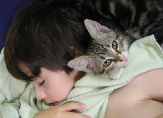 fotos-bebes-amor-animales