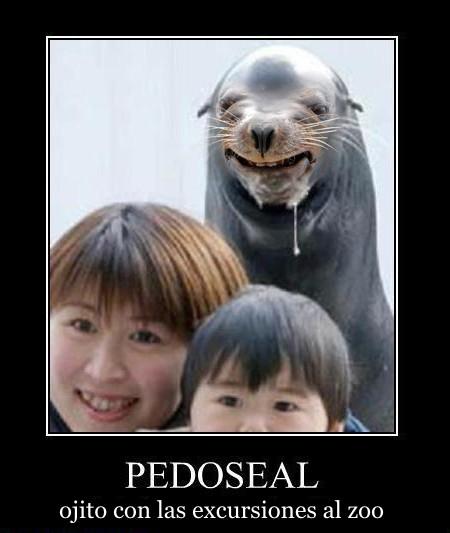 foca-alegre