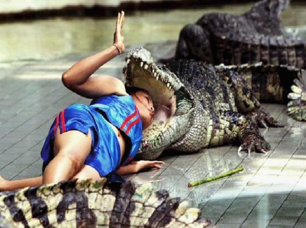 fotos-chica-cocodrilo