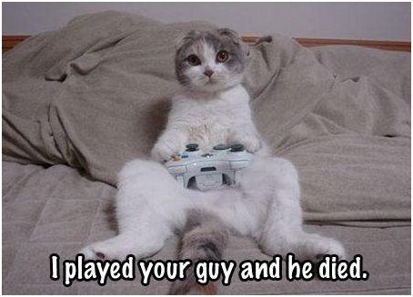 gato-mintendo
