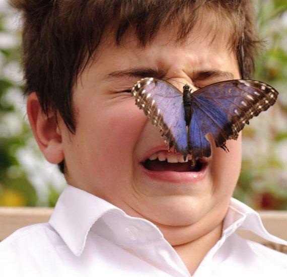 niño-mariposa