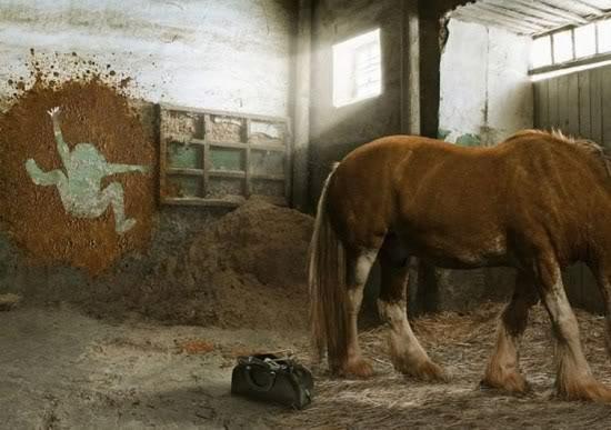 caballo-diarrea