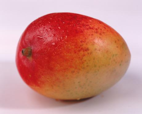 mallonesa-mango
