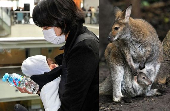 personas-animales-identicos