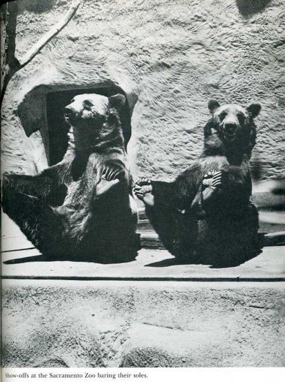 fotos-recuerdo-blanco-negro