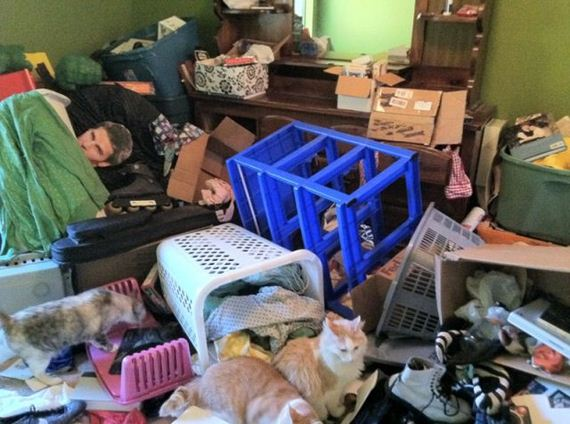 fotos-cuquis-gatos-20