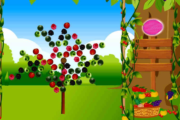 jardin-frutas-colegio