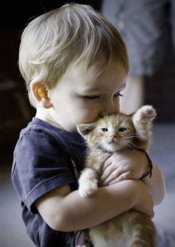 niño-gato