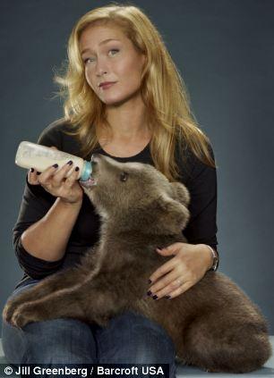 oso-bebe