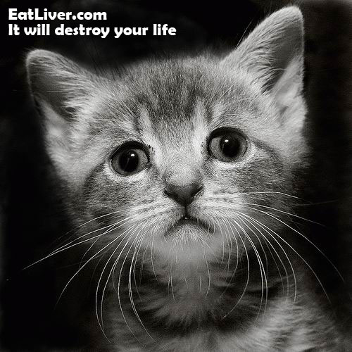 gatito-triste