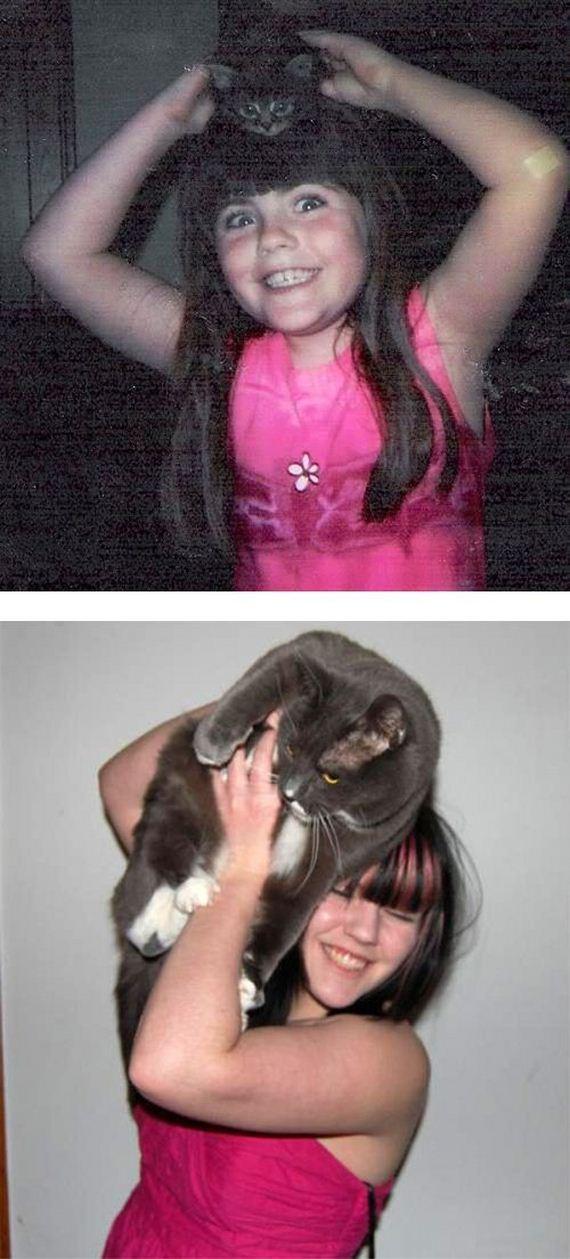 imagenes-gatos-graciosos-10