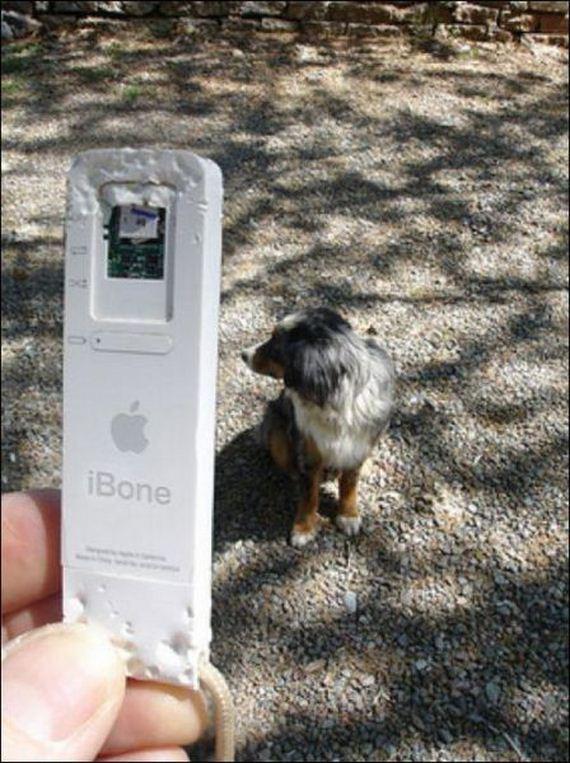perro-mordedor