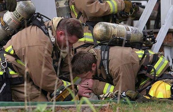 animales-rescatados-accidentes-18