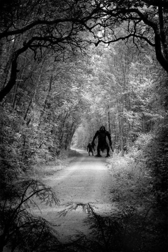 bosque-tenebroso