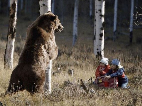 oso-niños