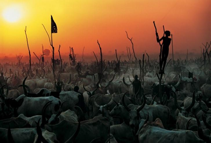 fotografias-tribus- pueblos-africa-05
