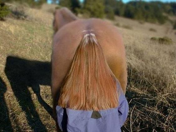 chica caballo