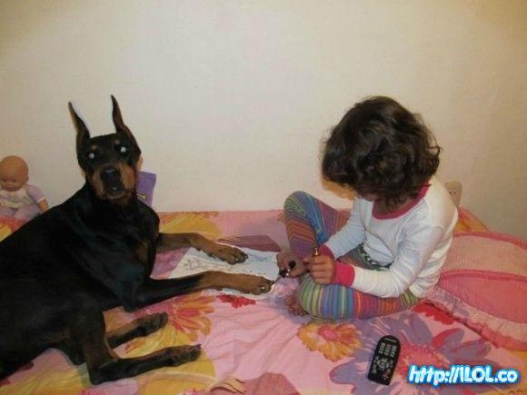pintauñas-perro