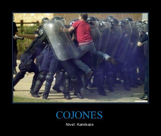 cojones