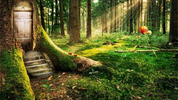 juego-bosque-encantado