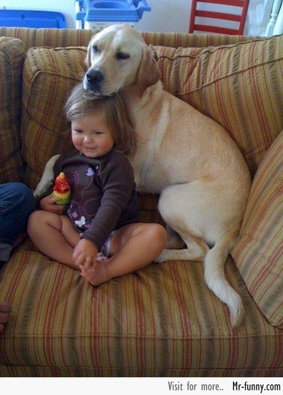 bebe-perro-1