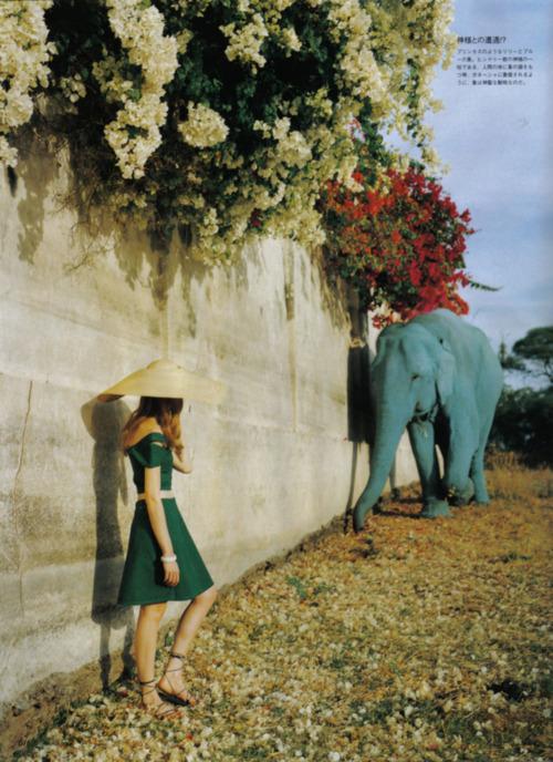 elefante-azul