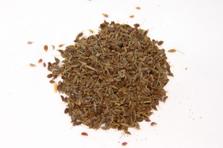 licor-anis-seco-casero