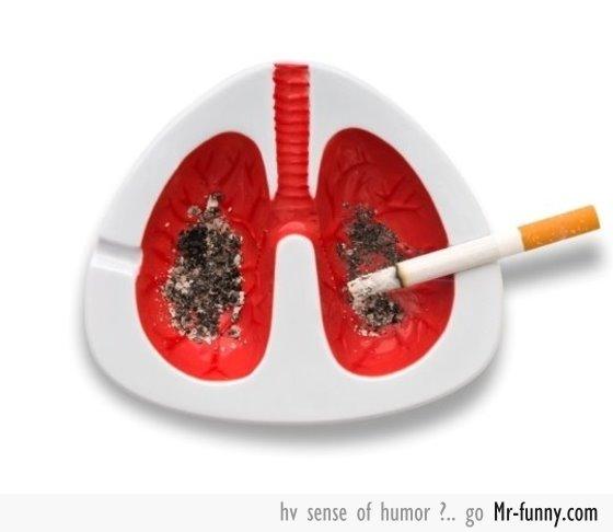 tabaco-f
