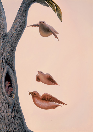amily of Birds