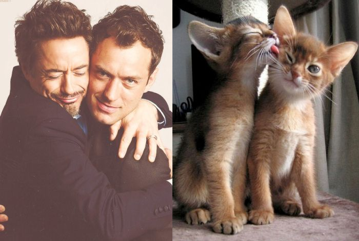 hot_men_and_their_feline_counterparts_01