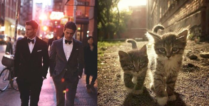 hot_men_and_their_feline_counterparts_50