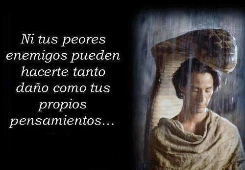 z pensamientos (1)2