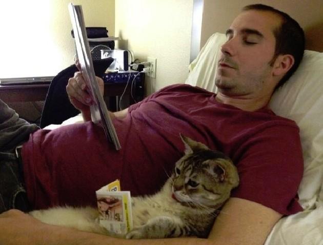gatito-leyendo-630x478