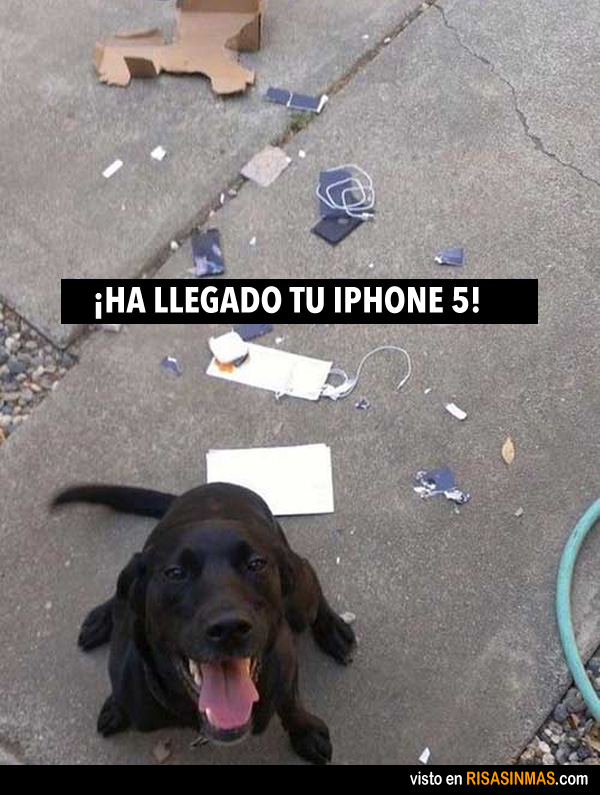 ha-llegado-tu-iphone-5