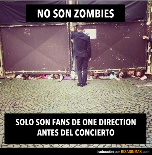 fans-one-direction-