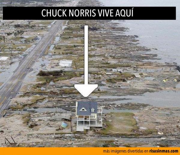 chuck-norris-vive