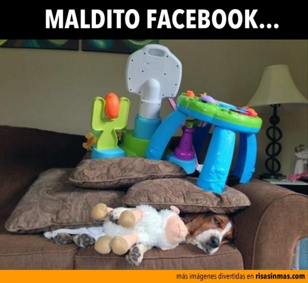 maldito-facebook