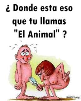animal. HUMOR GRAFICO