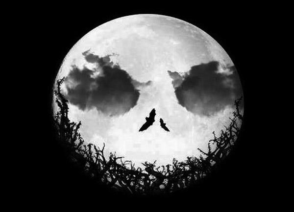 luna-halloween