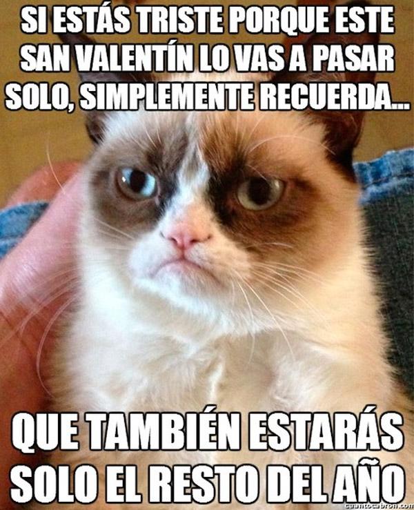 v-solo