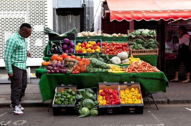 vegatables-728x481