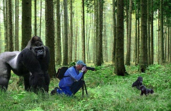 fotografo apuros