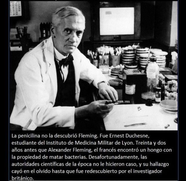 curiosidades-penicilina