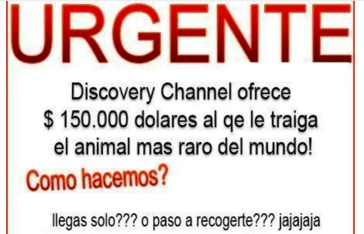 urgente-1