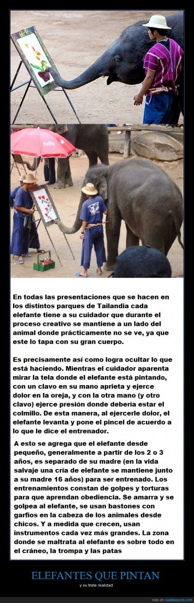 elefantes_que_pintan
