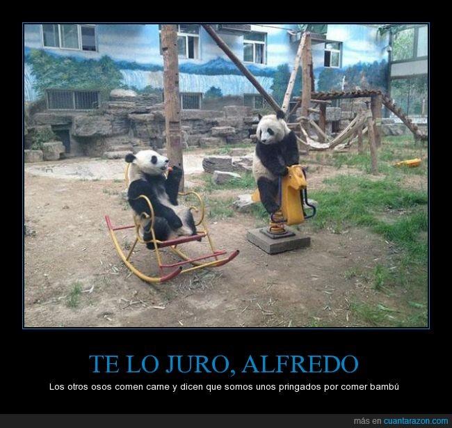 juro_alfredo